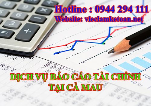 Dịch vụ làm báo cáo tài chính tại Cà Mau