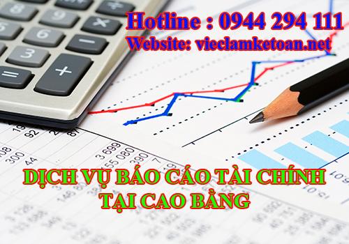Nhận làm báo cáo tài chính hàng tháng tại Cao Bằng